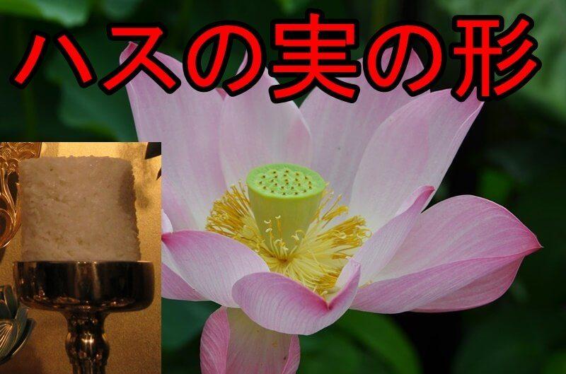 お仏飯の盛り方。蓮実形はハスの実の形がモデル